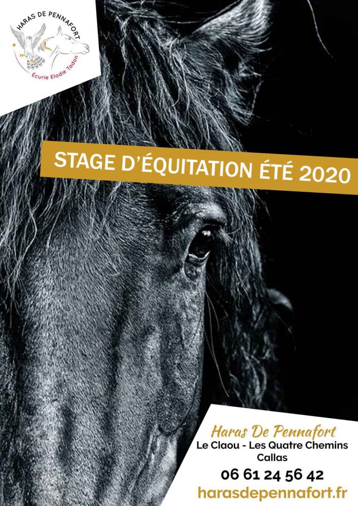 stage-ete-equitation-2020-var-haras-cheval